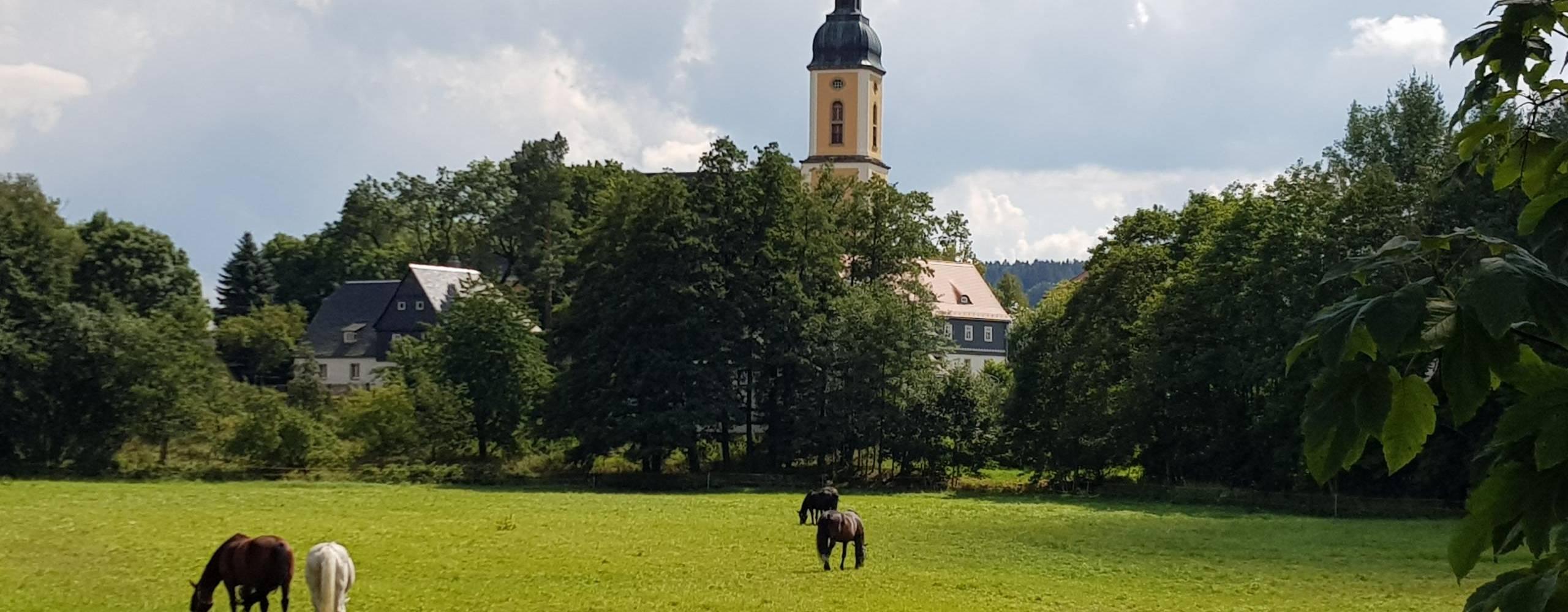 20200819 134833 ©Kirche mit Weidekoppel Foto: Gerlinde Kühn