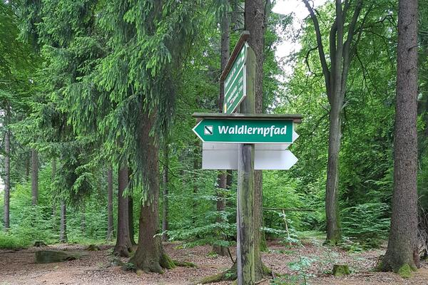 Wegweiser Waldlernpfad bearbeitet